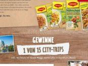 Rewe Gewinnspiel Maggi Kochstudio 15 Städte Reisen 2017