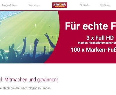 animonda Sommer Gewinnspiel Full HD Flachbildfernseher