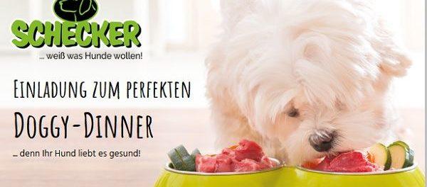 Schecker Gewinnspiel Doggy-Dinner Hundefutter