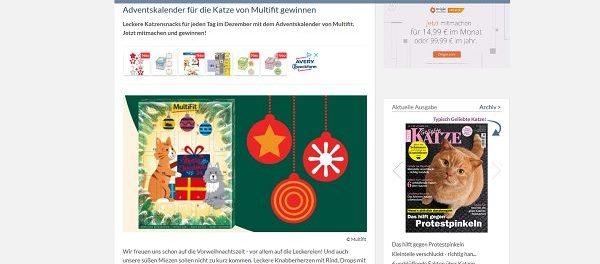 Katzen Adventskalender Gewinnspiel Geliebte Katze Magazin