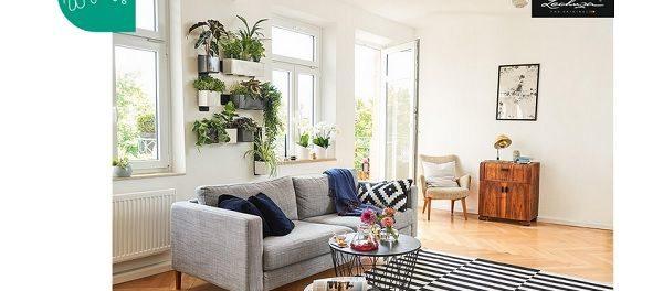 Couch Magazin Gewinnspiel 3 mal 2 Green Wall Home Kits von LECHUZA