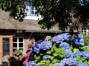 Reformhaus Gewinnspiel: Erholungsurlaub für zwei Personen und Gutscheine im Wert von über 1.000 Euro zu gewinnen