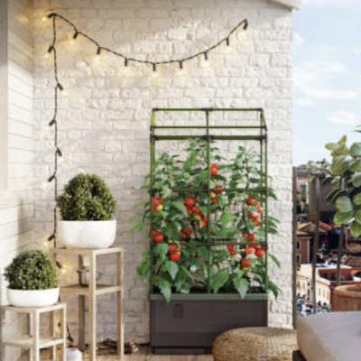 rtv Gesund & Vital Gewinnspiel: urbane Garten-Oase zu gewinnen