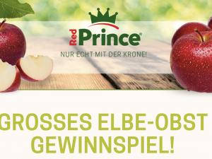 Elbe-Obst Gewinnspiel: Insektenhotel zu gewinnen